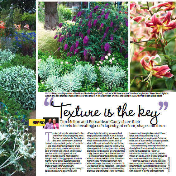 Garden Answers Magazine about NGS garden 'Saffrons' in West Sussex