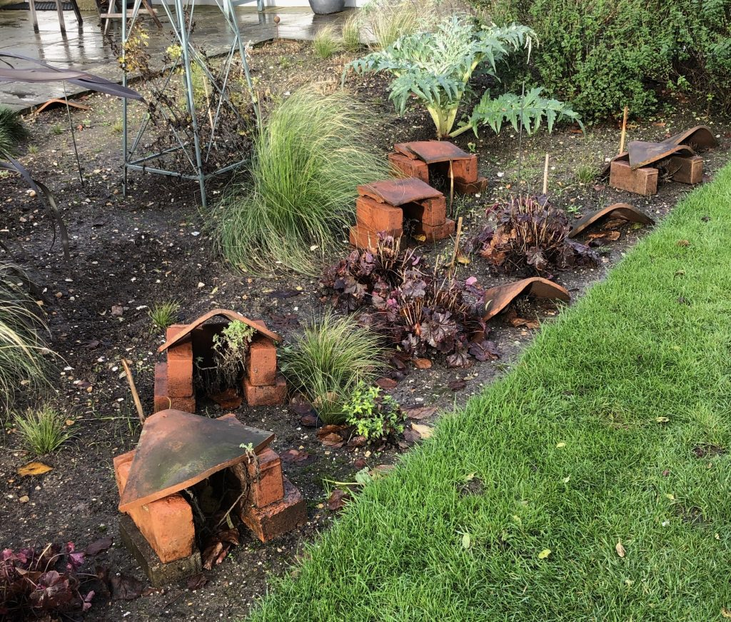Winter rain cover for plants